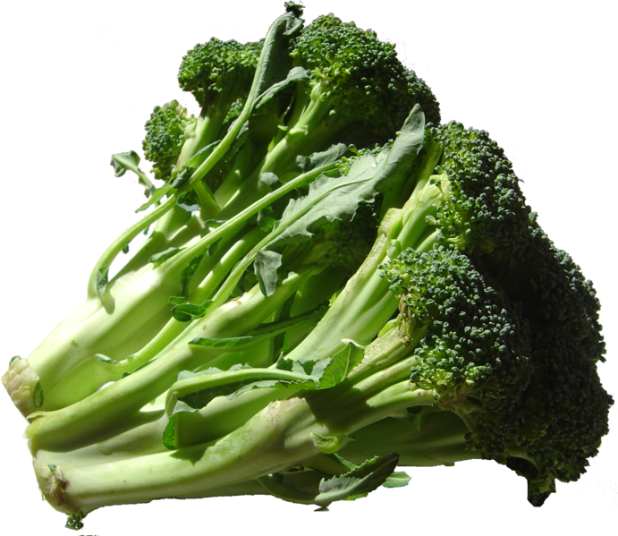 File:Broccoli DSC00862.png