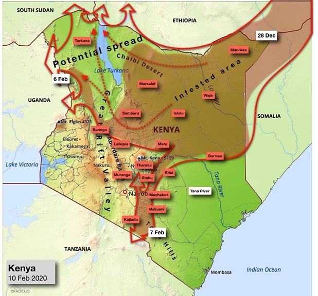 A map dated February 10, 2020 showing Desert Locust spread from Kenya to Uganda and Tanzania. Source: FAO Locust Watch
