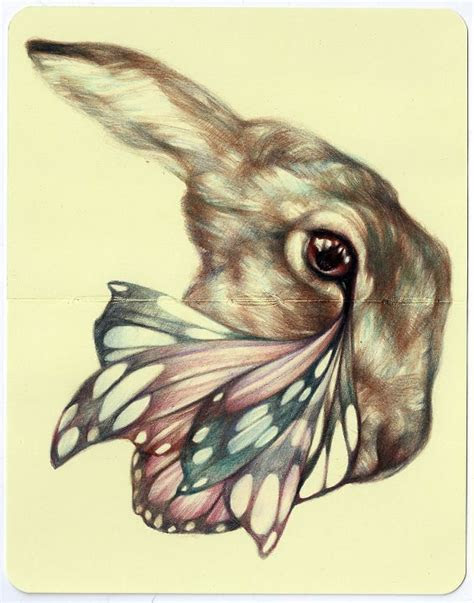 surreal combo  animals insects  plants art