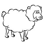 Tiere zeichnen lernen. Zeichnen lernen