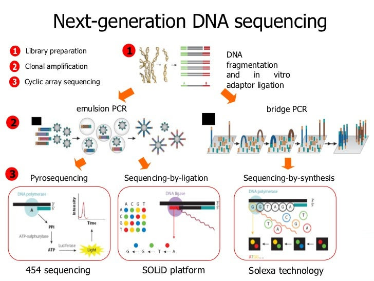 Types of Next Gen Sequencing. Image credit: http://image.slidesharecdn.com/