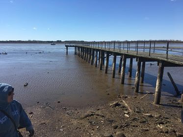 Water disappears Pamlico and Neuse rivers North Carolina