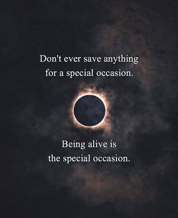 Being Alive The Special Occasion Quotes Area