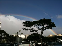11/4 from Aloha Tower Parking Lot