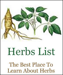 Welcome To Herbs List