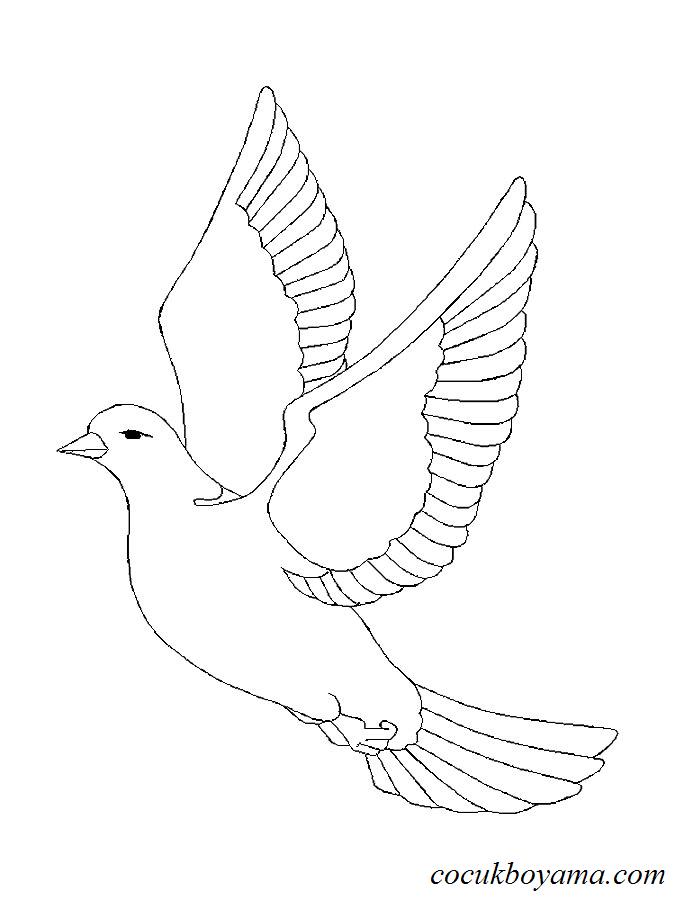 (seçilmiş) Güvercin Boyaması