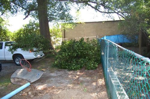 Backyard During the Redo