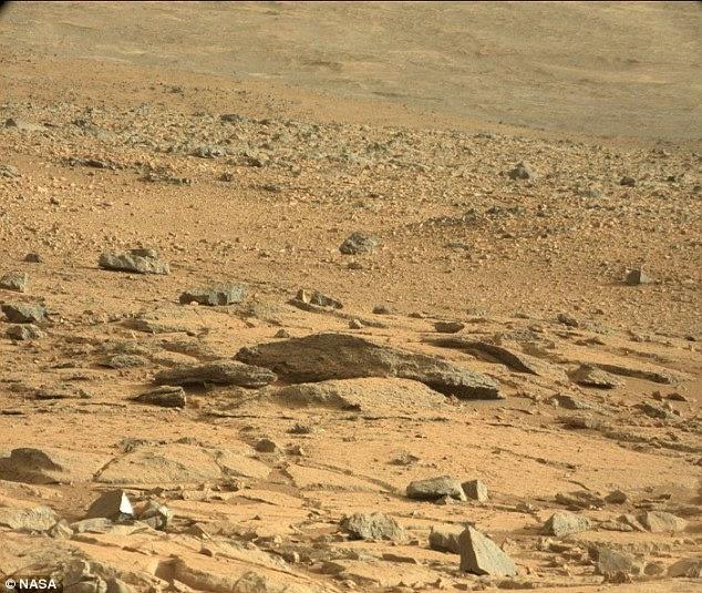 sao Hỏa, sinh vật lạ, thằn lằn, hình ảnh, Curiosity, tàu thám hiểm