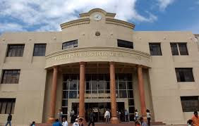 Tribunal Colegiado