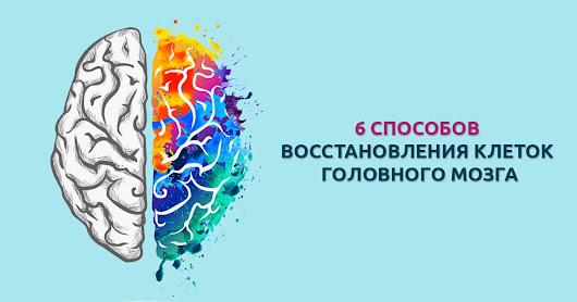 Василий Султ - Google