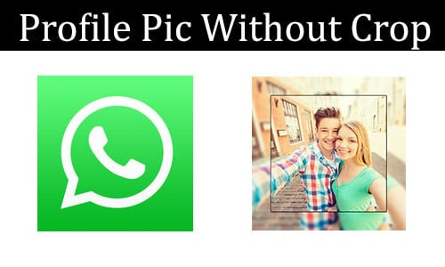Set WhatsApp Profile Picture Without Cropping (Full Size DP)