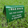 Funny Lawn Sign. Chinglish Humor. Tiny Grass is Dreaming