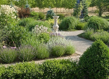 Garden desain