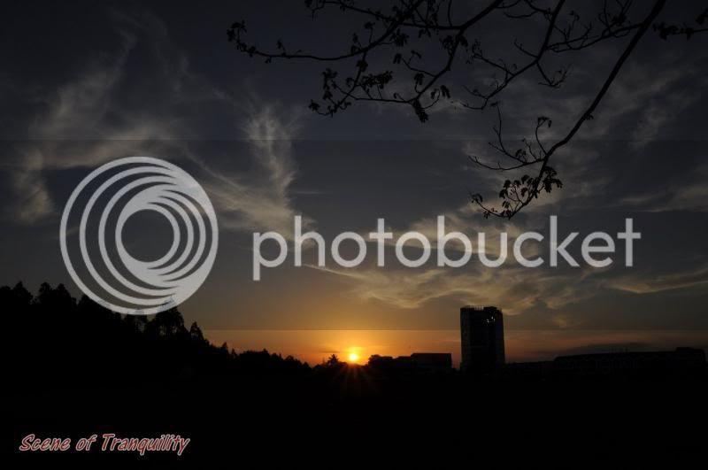 photo DSC_0249.jpg