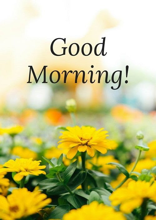 New Good Morning Images Download For Whtatsapp Pictures Part