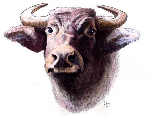 牛のイラスト 干支 丑年 牛の絵
