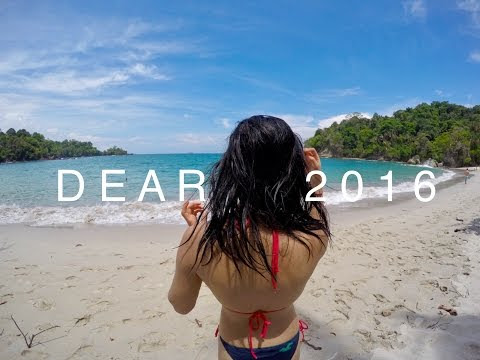 DEAR 2016 | A YEAR IN REVIEW