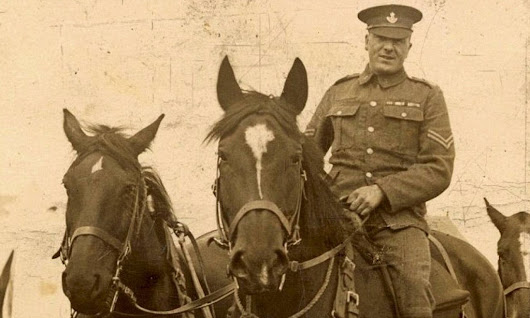 The real-life War Horse: Incredible story of sergeant who refused to put faithful mount down and kept him in secret stable