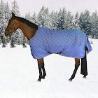 TuffRider 1200D Ripstop Pony Horse Print Blanket 4
