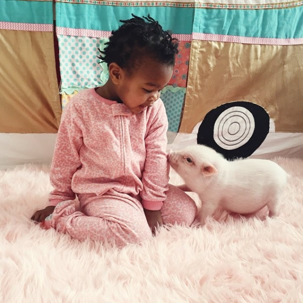 girl with pet pig