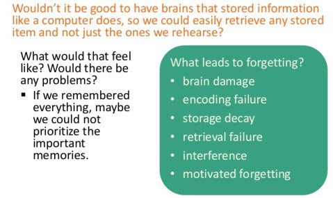 Forgetting : Not always a bad thing…. – IndiaMag – Medium