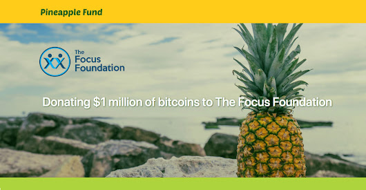 Pineapple Fund - The Focus Foundation