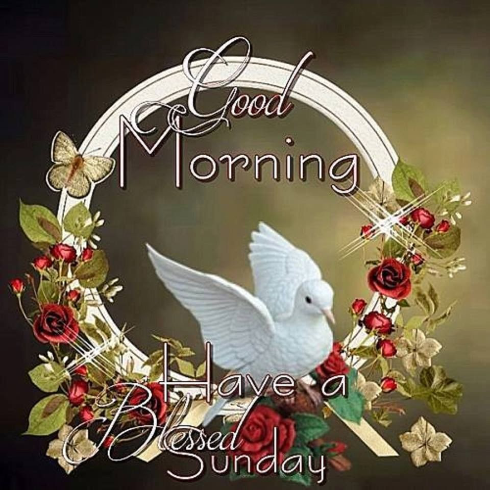Pictures Of Good Morning Blessed Sunday Kidskunstinfo