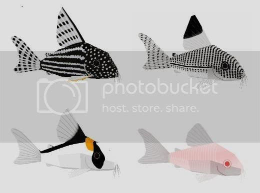 photo fish.papercraft.via.papermau.002_zpsshsa7e4e.jpg
