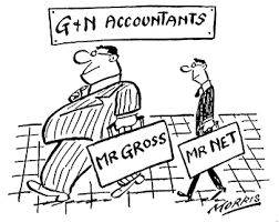 Math with Mrs. D: Gross Pay VS Net Income
