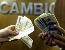 dolar novinha