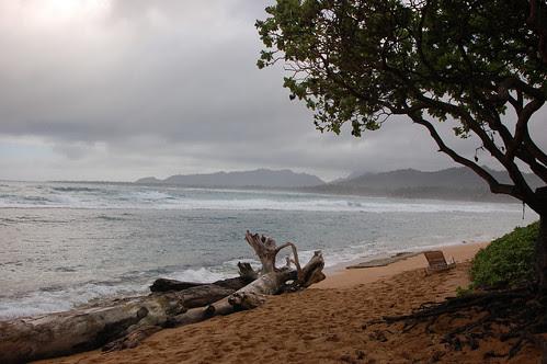 Kauai shoreline.jpg