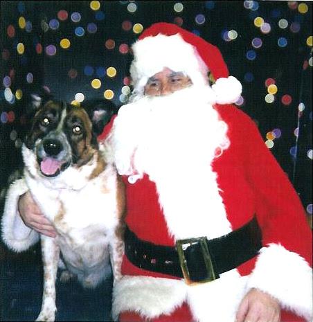 Snickers snows Santa