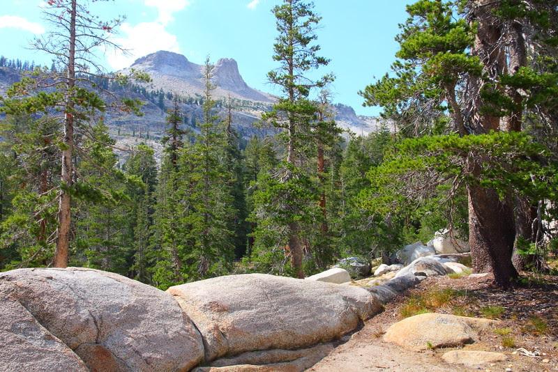 IMG_8637 May Lake Trail