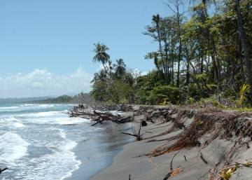 Cuando el mar se 'come' la biodiversidad