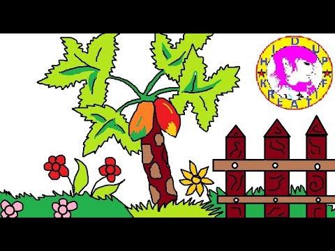 Caramenggambar Pohon Pepaya смотреть онлайн на Hahlife