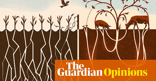 If you want to save the world, veganism isn't the answer | Isabella Tree | Opinion | The Guardian