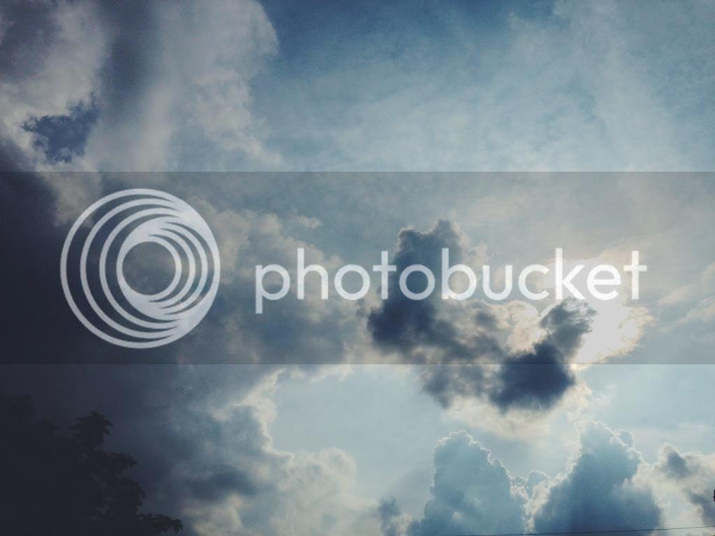 photo 2D3CDD9F-FBC5-4E14-8D57-3ED5A38CB3D4.jpg