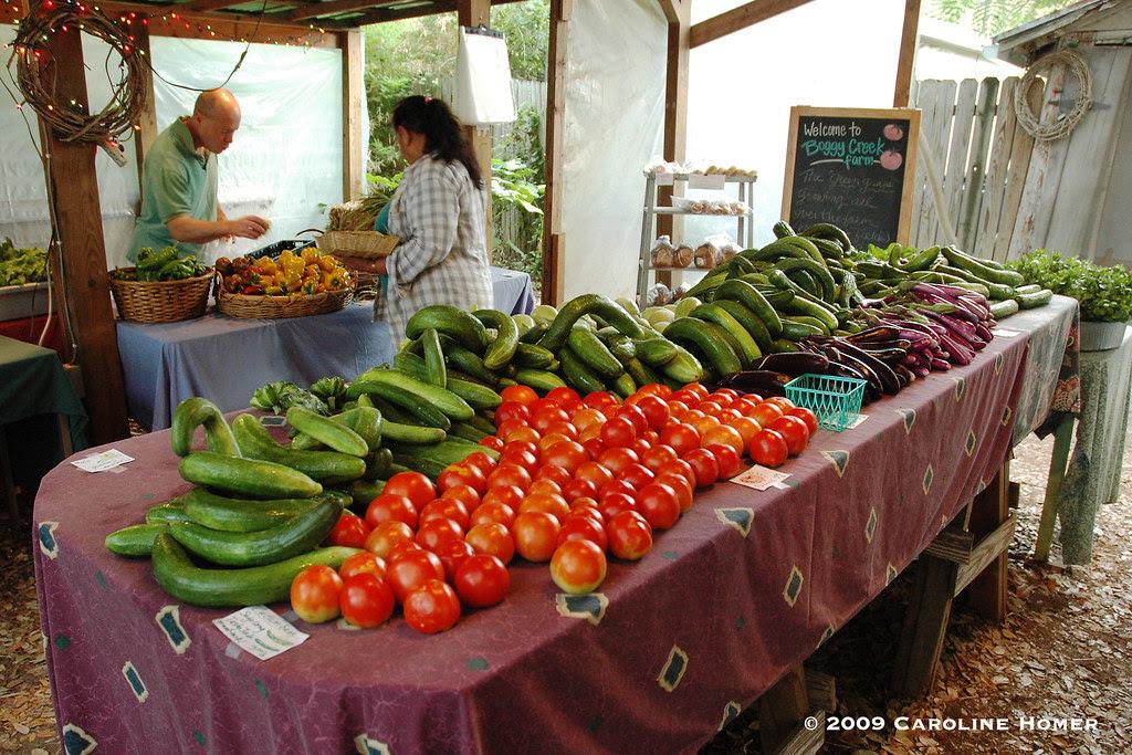 Tomatoes, cucumbers, eggplant and squash