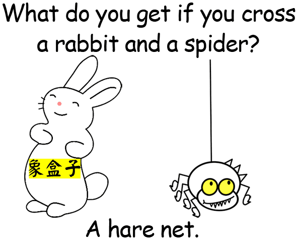 rabbit spider hare net