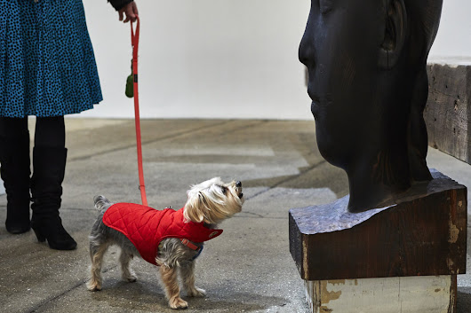 An exhibition for dogs will be unleashed at Brookfield Place