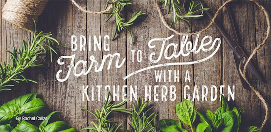 Bring Farm To Table with a Kitchen Herb Garden – Homes and Land of Malibu to Beverly Hills