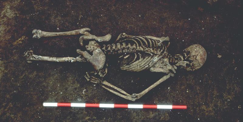 England Skeleton Stone
