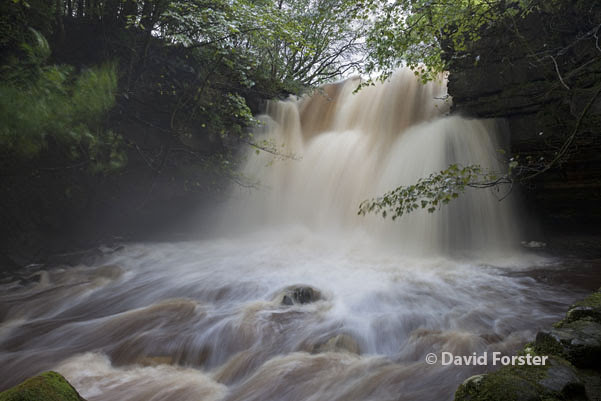 05D-6148 Summerhill Force (Gibson's Cave) in Flood Conditions Caused by Heavy Rain on the 24th and 25th September 2012 Bowlees Upper Teesdale County Durham