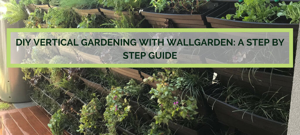 How To Build A Vertical Garden A Step By Step Diy Guide Vertical Gardens Direct