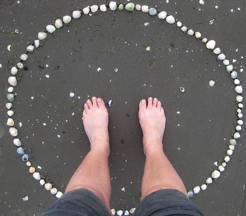 shell circle :: skjell i sirkel #2