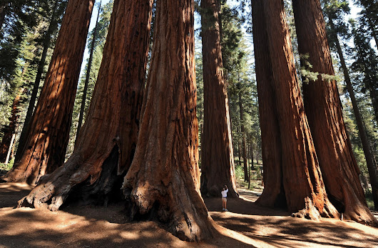 Bargain! Free entrance to national parks and monuments