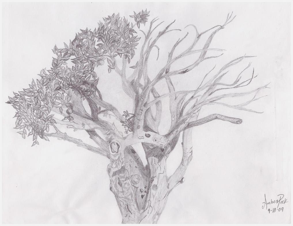 Half Dead Half Alive Tree Tattoo Related Keywords Suggestions