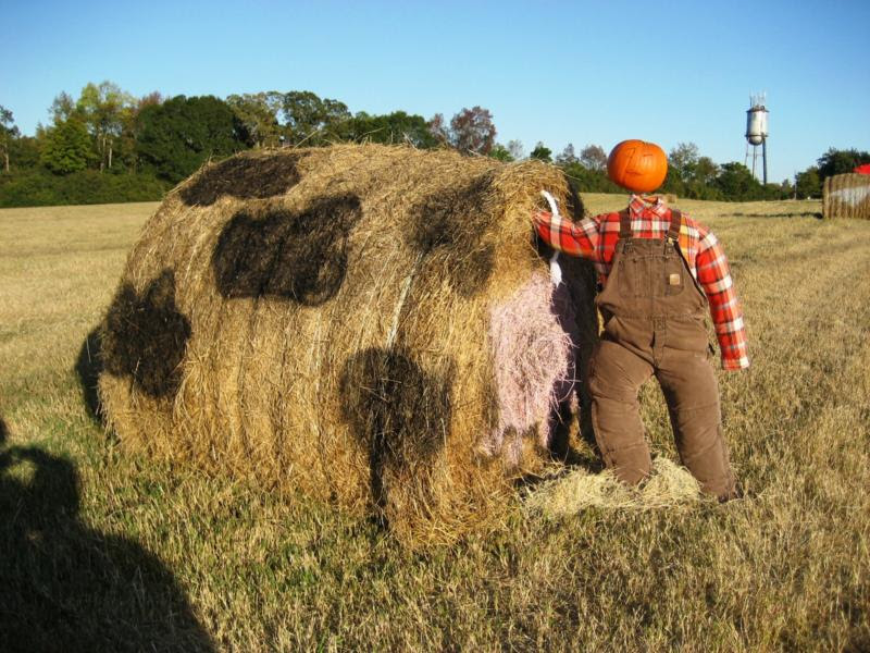 Round Hay Bale Halloween Decoration Halloween Decorations