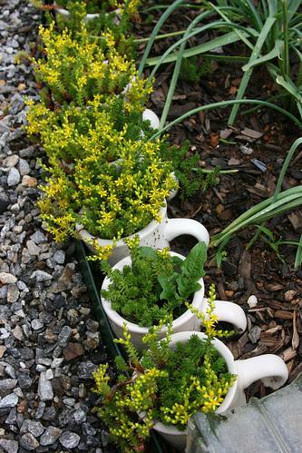 8_coffee_mug_planters
