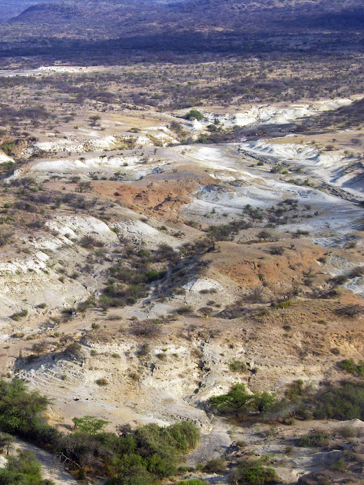 New understanding of Kenyan paleoenvironments opens window on human evolution in the area